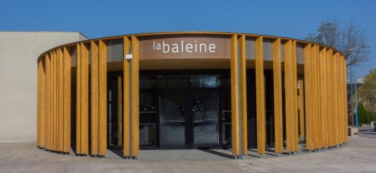 La Baleine, Le Krill, théâtre, culture, divertissement