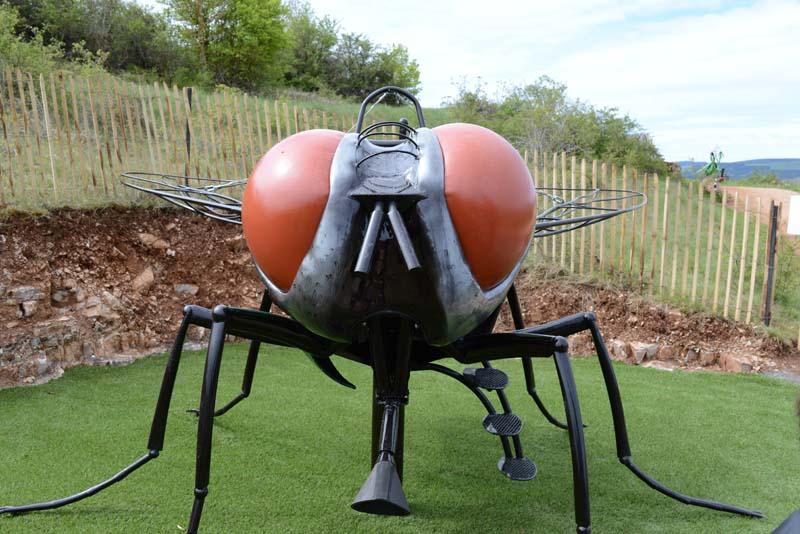 Micropolis, insecte, anniversaire